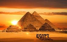 تأشيرة مصر (رقمية )