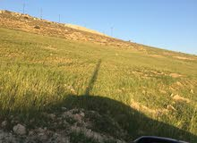 قطعة ارض للبيع في شفا بدران زينات الربوع حوض الشكارة