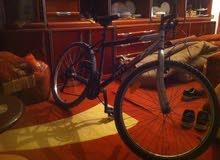 دراجة اطالية