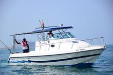 Walk around 31ft for sale on reduced price