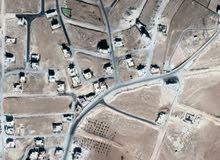 للبيع أرض 513 م في حوض ام العروق ملاصق  لحوض عيون الذيب بدران  مديريه شمال عمان