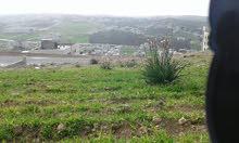 ارض في شفا بدران