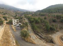 لبنان - مصيف في محمية أرز الشوف الطبيعية