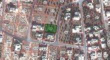 دونم ارض في بيت راس سكن ب- حي الميدان