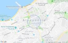 شقه للبيع في السكندرية