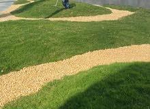20067/ غرفة وصاله بالايجار بالقرب من حديقة الزهور - دبي