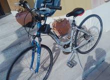 Trek Cruiser Beach City Dutch Bike in perfect condition for sale   Full aluminum