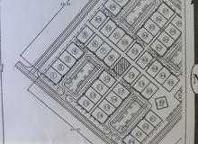 أرض سكنية للبيع في ولاية صحار