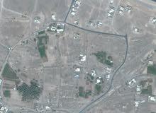 للبيع ارض زراعيه سكنيه/فضا