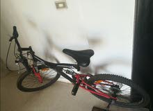bike 24 new mesh mad2oura fremet jded gear wvitesse w dwelib jded(70655218)