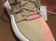 حذاء رياضي جديد لم يستعمل ابداماركة adidas مقاس 43