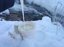 عسل أبيض جبلي أصلي كيلو 1 (كميه محدوده) +عشر ملاعق خشب التوصيل مجانا
