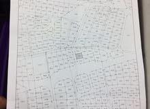 ارض تجاري للبيع-الزرقاء حي البتراوي_شارع الكرامة