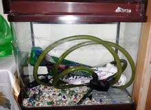 aquarium with external filter for sweet or salt water