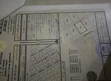 للبيع ارض في طوى النص رقم القطعة 2881