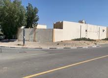 للايجار بيت عربي قريب من المترو
