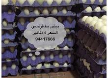 للبيع بيض بط فرنسي