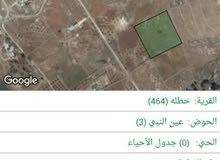 أرض زراعية 10 دونمات الموقع ( عين النبي  )