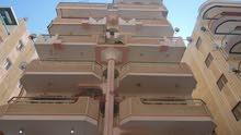شقة هاي لوكس طابق اول علوي مسجلة في شاطئ النخيل