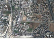 للبيع ارض 1302 م سكن ب في الرونق غرب عمان