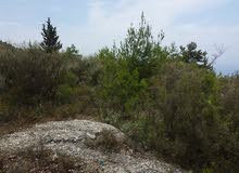 LAND for RENT At FATQA KESERWAN