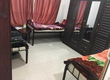 سكن مشترك غرفة وصالة