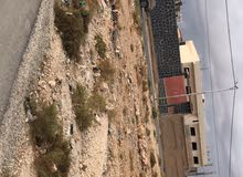 للبيع ارض مساحه (3300 - متر ) مغير السرحان