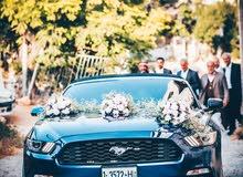 Ford mustangفورد موستينج