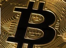 Buy dollars and bitcoin
