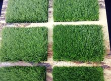 Artificial grass carpet shop √ New sell and fixing anywhere qatar