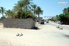 قطعة أرض للبيع سكنية_تجارية وموقعها في منطقة صورسعود