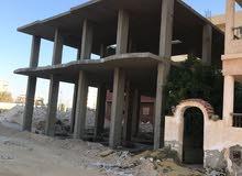 بلوبيتش - الابيض - مرسي مطروح