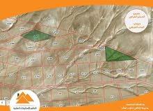 ارض استثمارية بسعر منافس في جنوب عمان