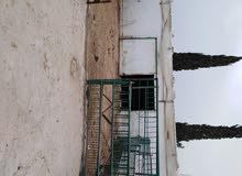مزرعه بركسات اربع بركسات كبار + بركس كبير + غرفت حارس