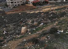 قطعة ارض نصف دونم للبيع حوض ام بطمة صافوط اسكان جمعية يثرب