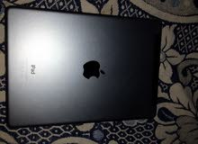 Basra - Used  Apple for sale