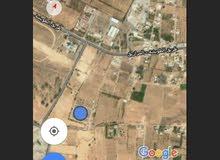 الطويشة جنب مطار طرابلس