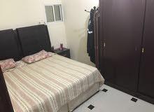 شقة نظامية نضيفة غرفة وصالة للايجار بعين خالد بسعر مغري