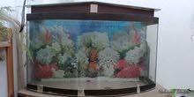 حوض سمك مع قاعدة
