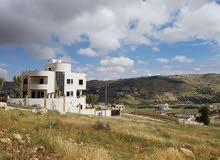 ارض 770م  في ام رمانة شفا بدران