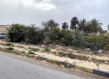 قطعة أرض للبيع بصرمان ع طريق الرئيسي 500 متر