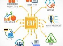 رئيس قسم الحسابات ( منظومات - اكسل - ERP )