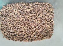 Gravel or aggregate Supplier in bulk from Pakistan