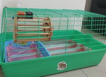 rabbit cage +more accessories for sale