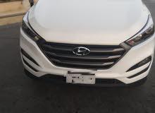 ff475358e موقع #1 تأجير سيارات : سيارات للايجار بدون وسيط : مع سائق او بدون : مصر