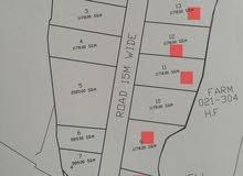 للبيع أراضي زراعية وتتغير سكني في ولاية السويق منطقة الفاو جنب مسجد الفاو  مباشر
