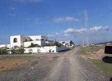 أرض مساحتها 300م تقع بالحمامات -قصر المنارة .