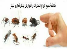 مكافحه جميع انواع الحشرات الزاحفه