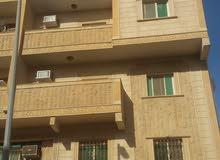 شقة غرفتين للايجار بحي الربوة تقاطع حراء مع الامير ماجد