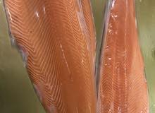 بيع سمك السلمون النرويجي